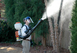 Spray Services